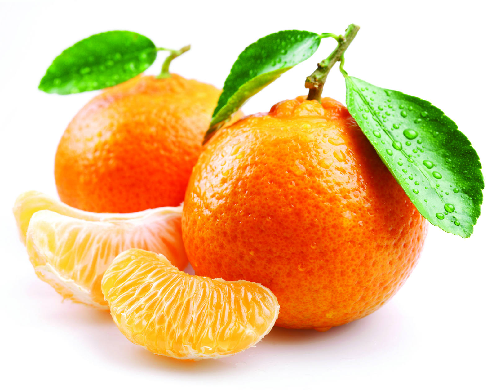 Tangerine Ink